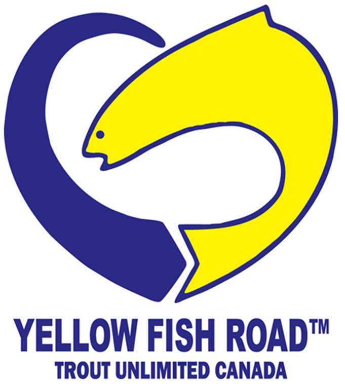 Yellow Fish Road - Trout Unlimited Canada
