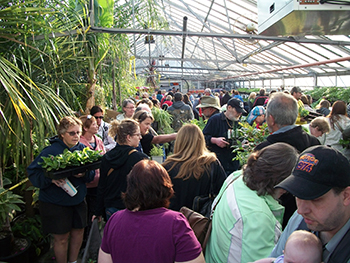 Shoppers browsing the greenhouse